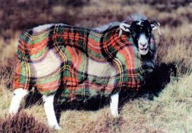 "the adventures of tartanscot™: ""National Tartan Day - 2012 . . . """