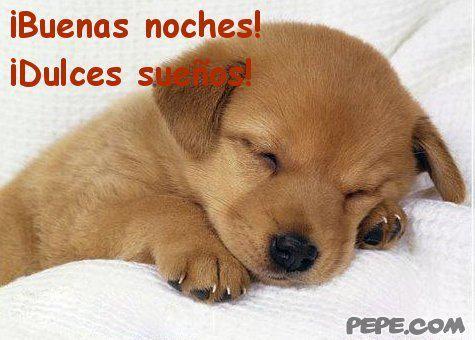 ¡Que descansen! #HastaMañana