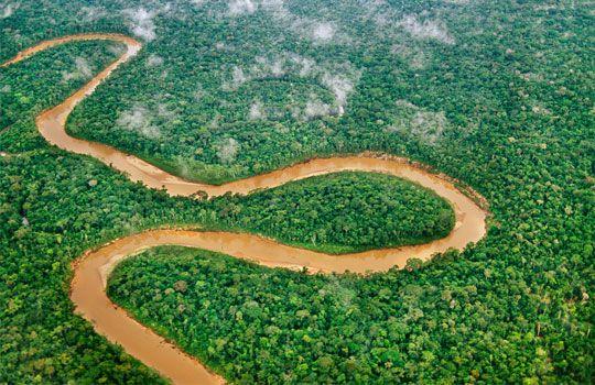 Aerial View Of La Torre River Amazon River Basin Peru C Frans
