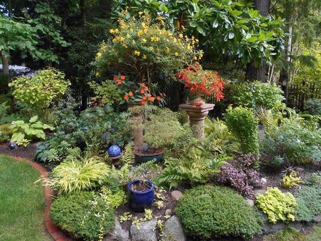 The Never Ending Garden Finegardening Fine Gardening Organic Gardening Plants