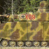 9.SS-PzDiv (Kdr. PzRgt) [Ostfront, April 1944] photo pzIV_58.jpg