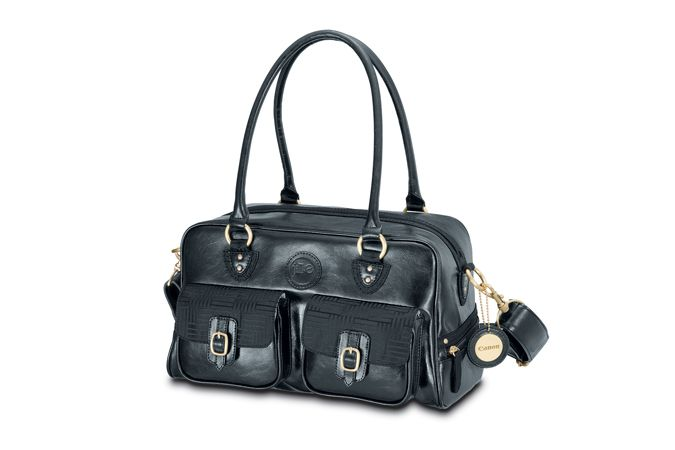 Would love this for my new camera... stylish camera bag!