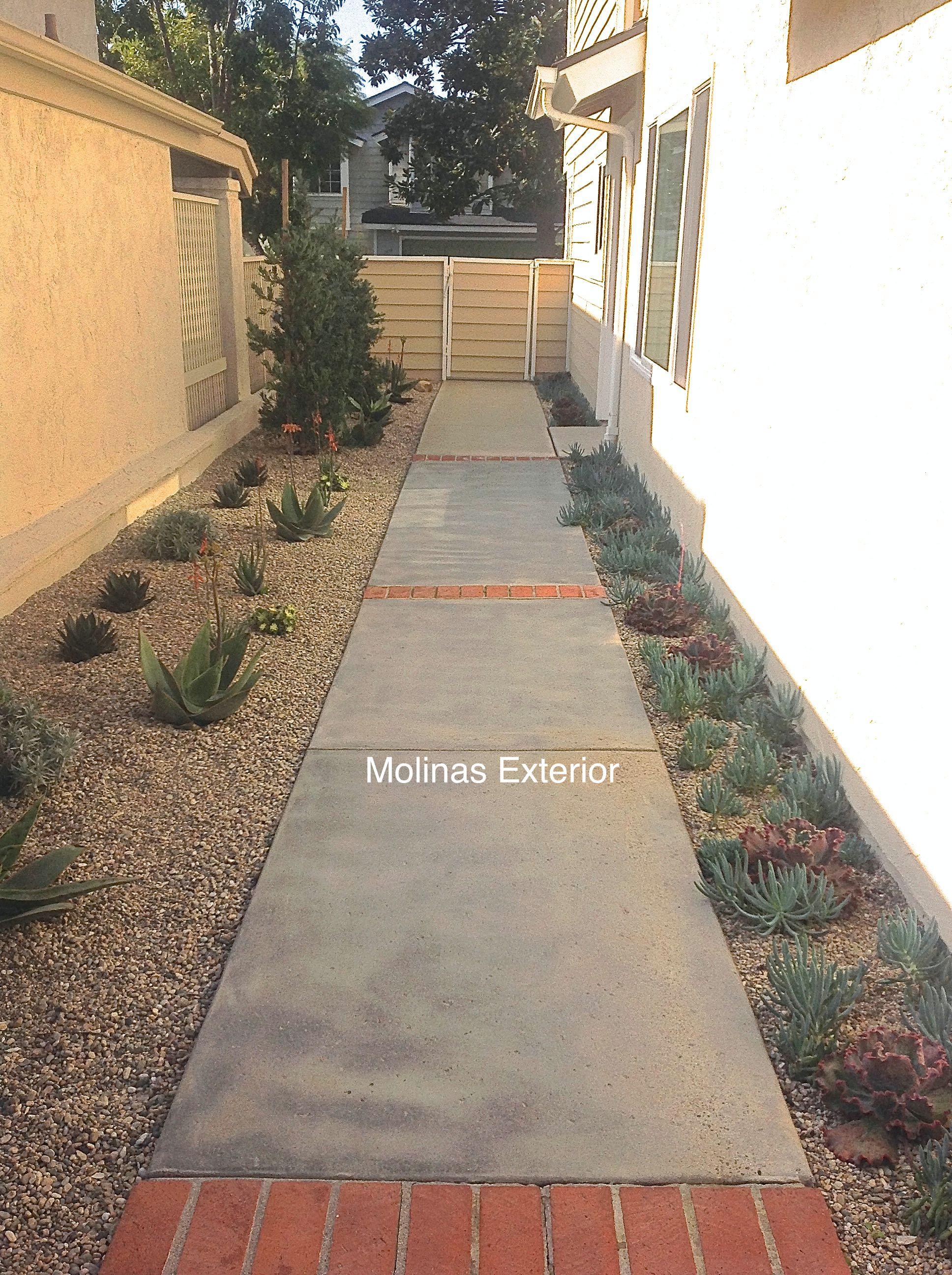 Beautiful concrete walkway accompanied by brick bands