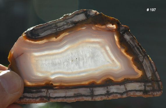 Genuine Deming Agate Slice from Deming  New by JonesMineralCabinet
