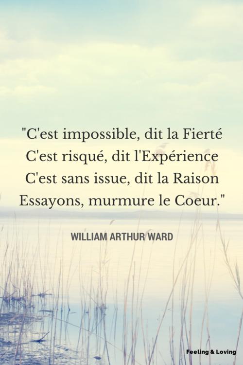 《C'est impossible, dit la Fierté  C'est risqué, dit l'Expérience  C'est sans issus, dit la Raison  Essayons murmure, le Coeur.》
