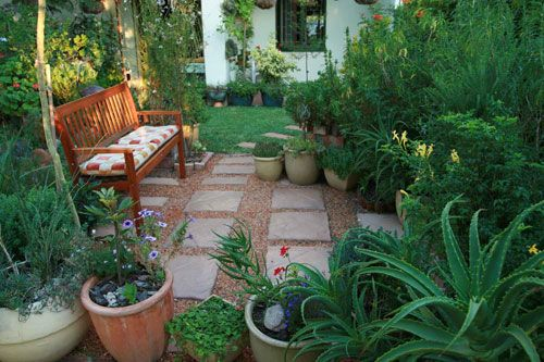 water wise garden designs. Lush green  and water wise courtyard indigenous gardens western cape Google Search Tuin Pinterest