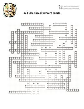 Cell Organelles Crossword Puzzle Education Science Life Biology