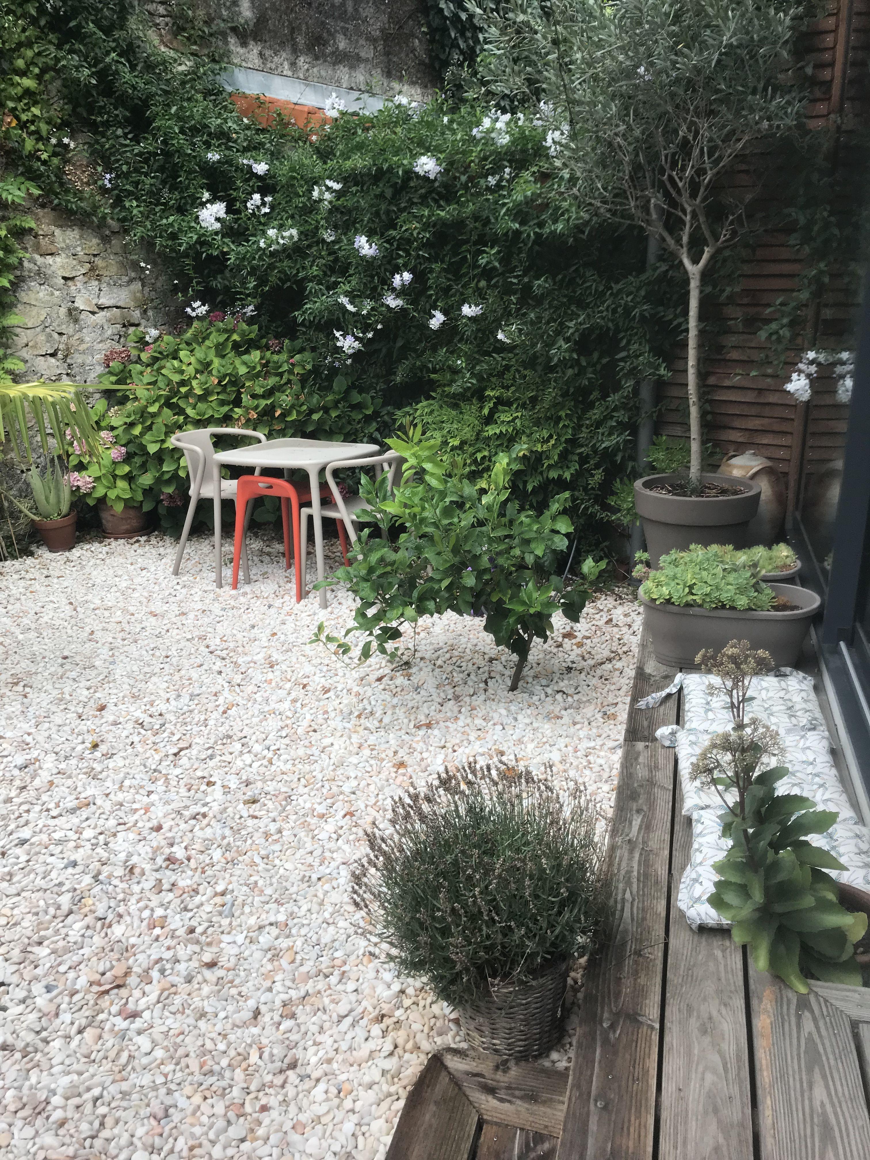 Jardin Clos De Murs Avec Banc Terrasse Et Galets Un Solanum Cache