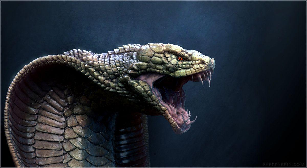 Cobra-Dragon, Dmitry Parkin on ArtStation at http://www ...