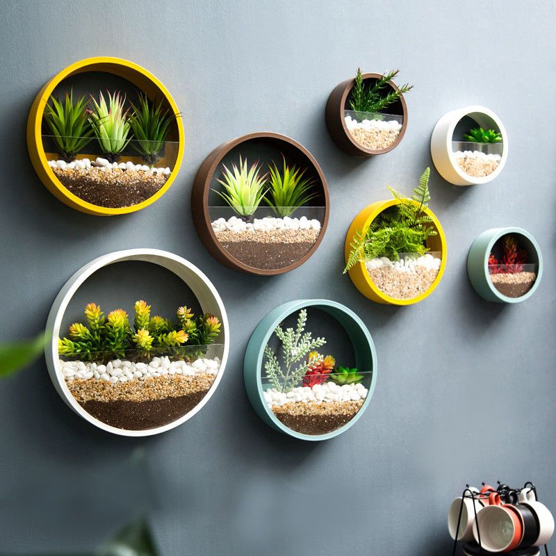 Round Hanging Wall Vase Planter For Succulents Herbs Wall Decor 1pcs New In 2020 Hanging Flower Pots Plant Decor Wall Vase