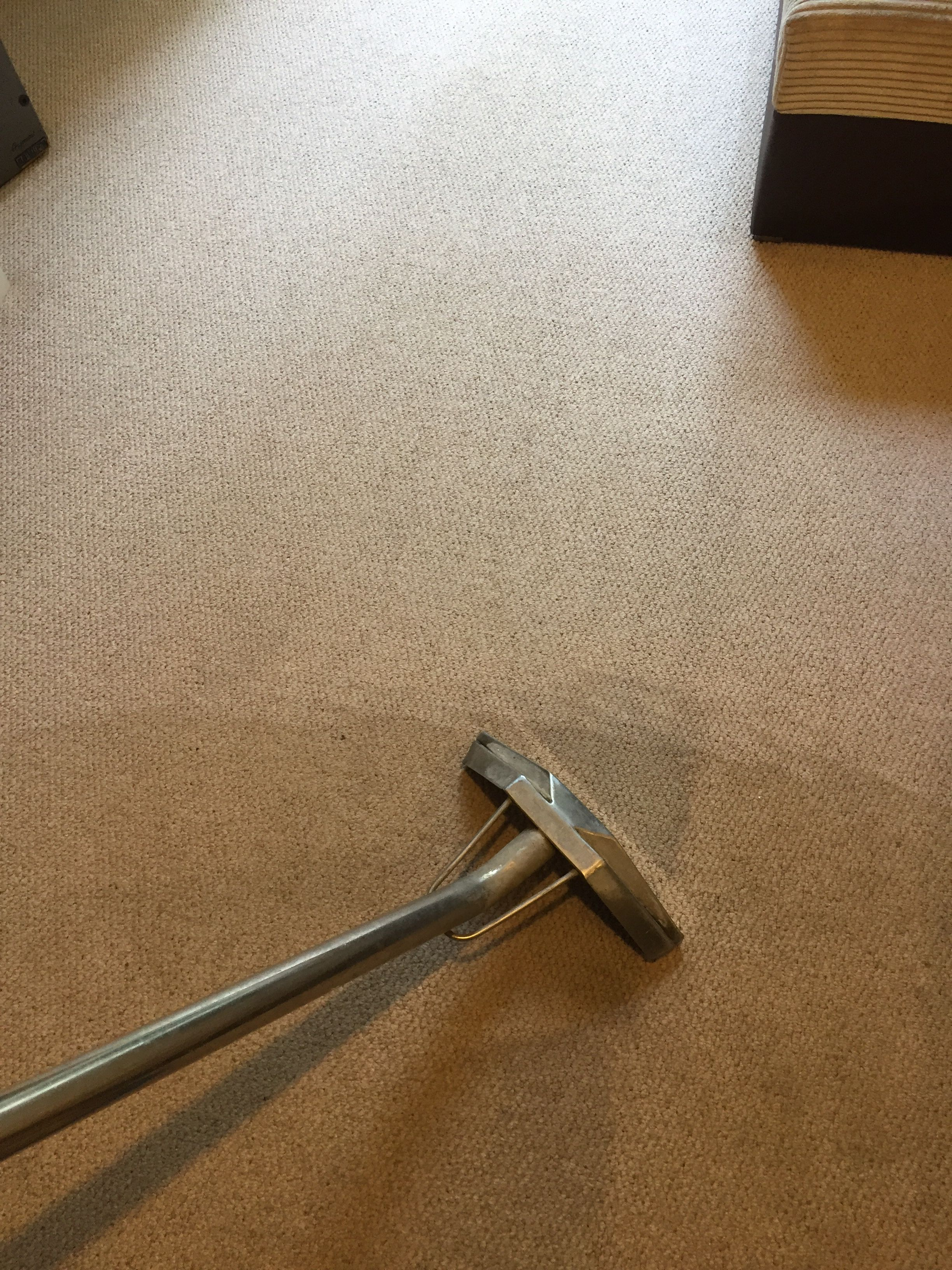 Diamond Cleaning Offers A Professional Carpet Cleaning Service In Brighton And Surroun How To Clean Carpet Professional Carpet Cleaning Carpet Cleaning Service