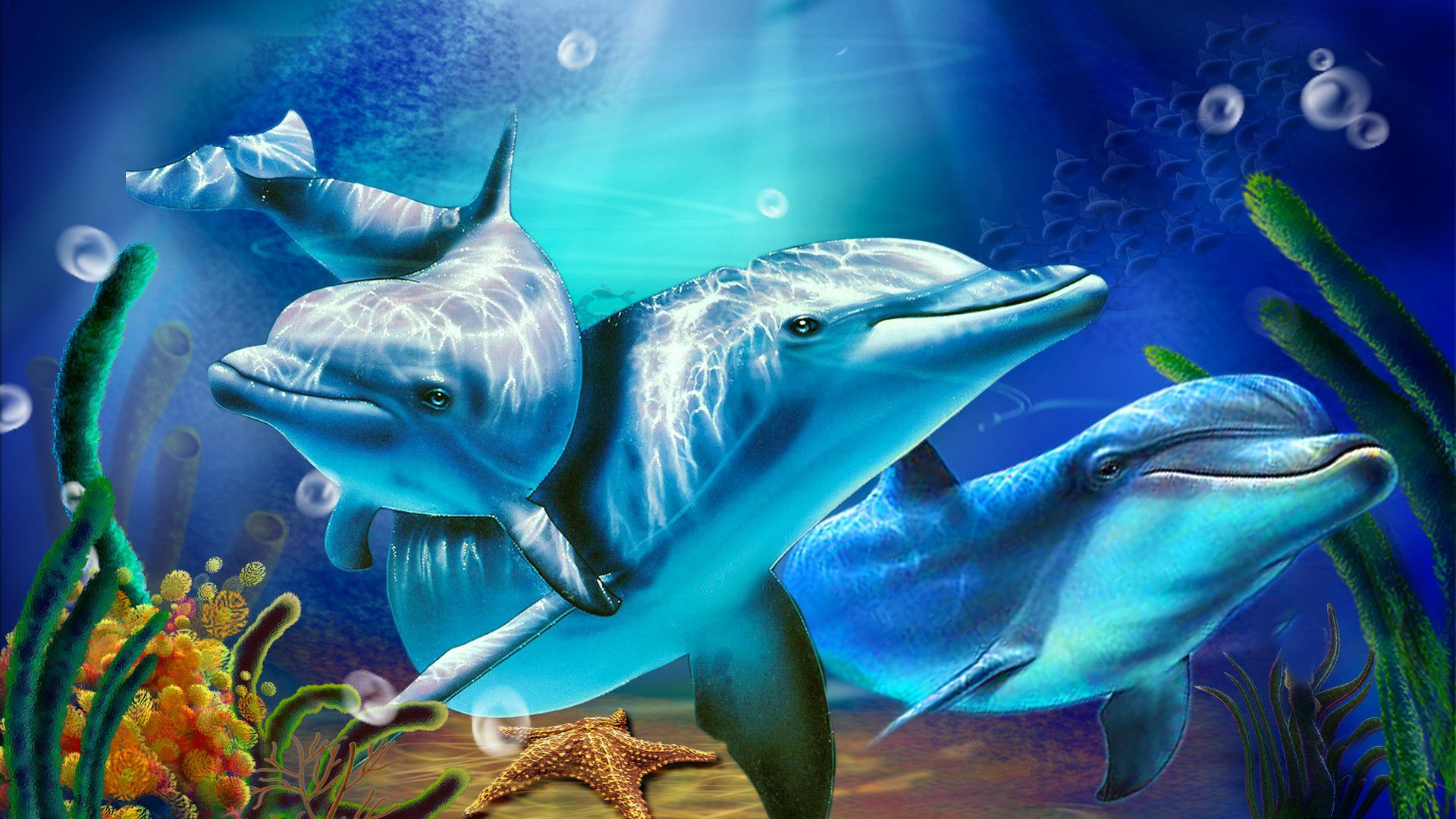 Dolphin Animated Wallpaper Dolphins Animal Dolphin Hd Underwater Wallpaper