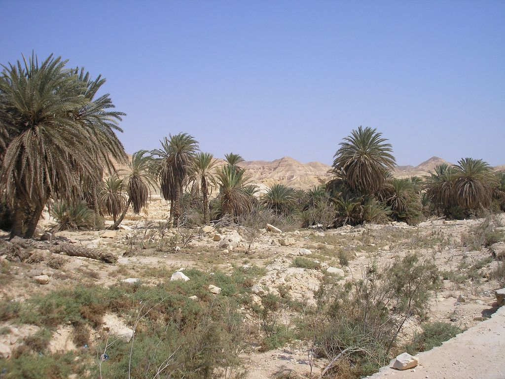 Traditional Site Of Manna And Quail