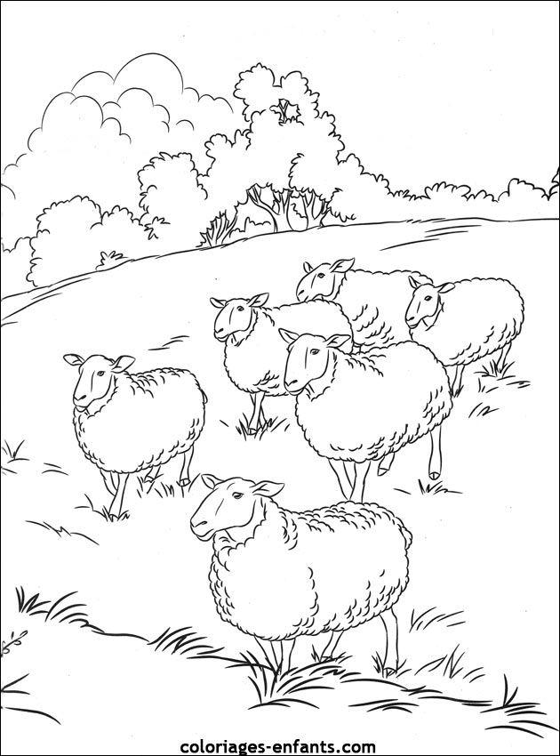 Coloriage d 39 animaux dessin de mouton colorier - Mouton en dessin ...