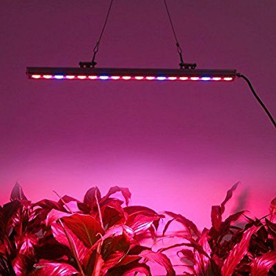 Led Grow Light Strips Roleadro Led Grow Light Strip For Indoor Plant Growing Lights 55Cm