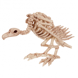 Vulture Skeleton 12in | Wally's Party Factory #vulture #bone #skeleton #décor #halloween
