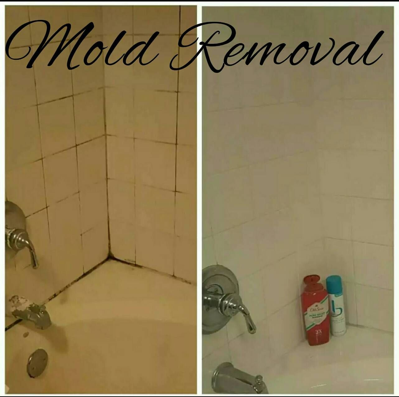 How to: Mold Removal, Remove Calcium Build Up, Remove Hard Water ...