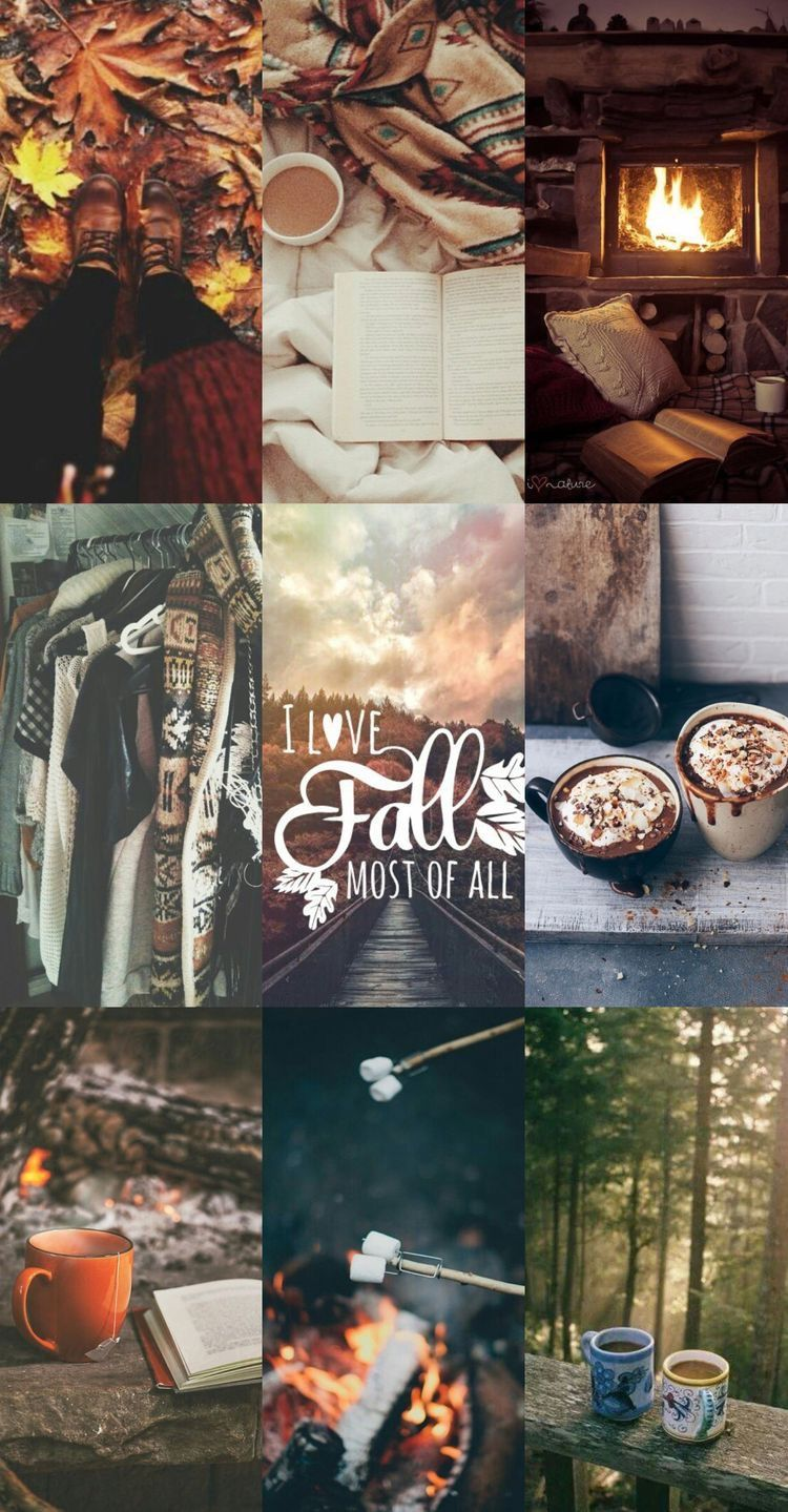 Simple Fall Wallpaper For Iphone - 348944976ed2e28ff62fc9855cab514d  Gallery_696747.jpg