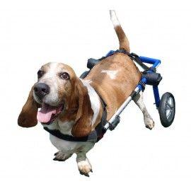 Silla De Ruedas Para Perros Autoajustable Silla De Ruedas Para Perro Arnes Para Perros Perros