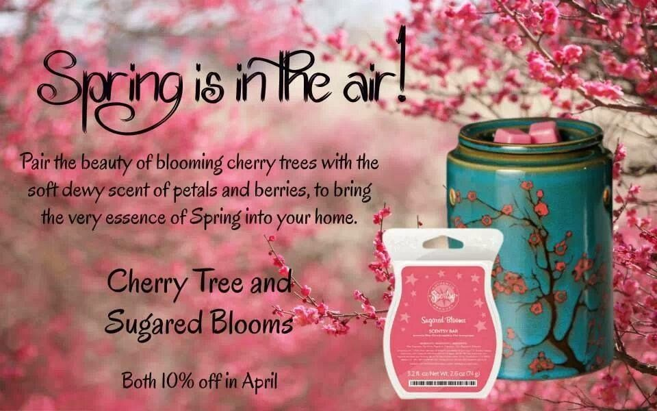 Spring is in the air! Pair the beauty of blooming cherry tree with the soft dewy scent of petals and berries, to bring the very essence of spring into your home. WOTM: Cherry Tree. SOTM: Sugared Bloom. Both 10% off in April.