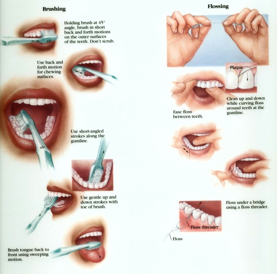 Oral Hygiene Care Tips Brushing and Flossing Your Teeth