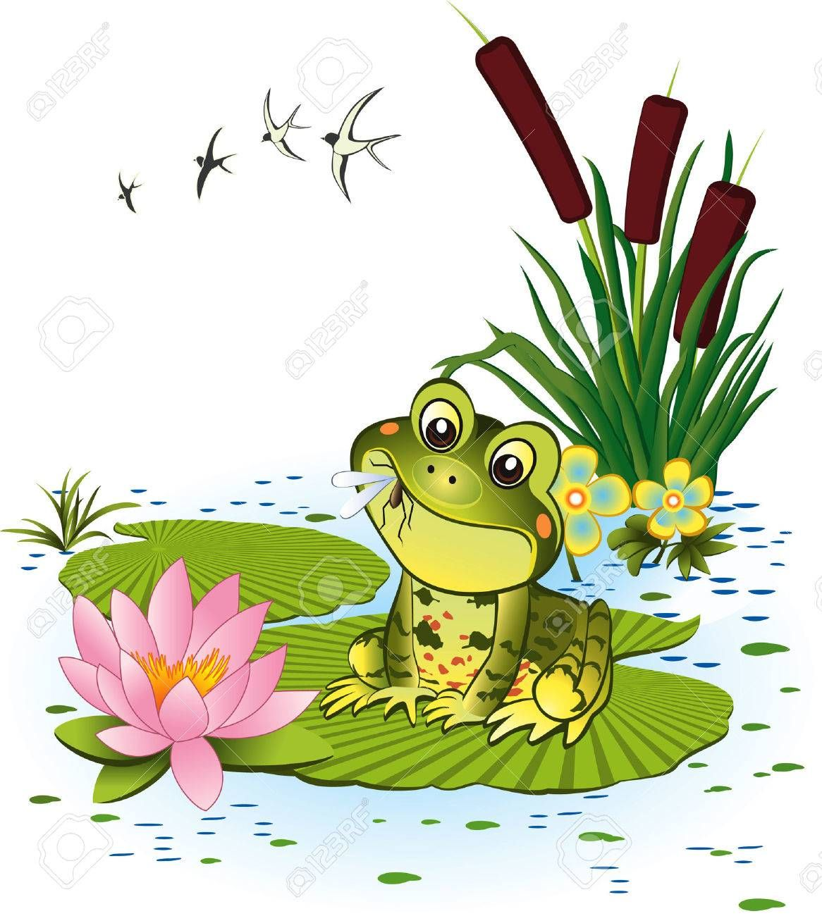 Cute Frog With Mosquito Royalty Free Cliparts Vectors And Stock Illustration Image 8642200 Frog Illustration Frog Art Frog Drawing