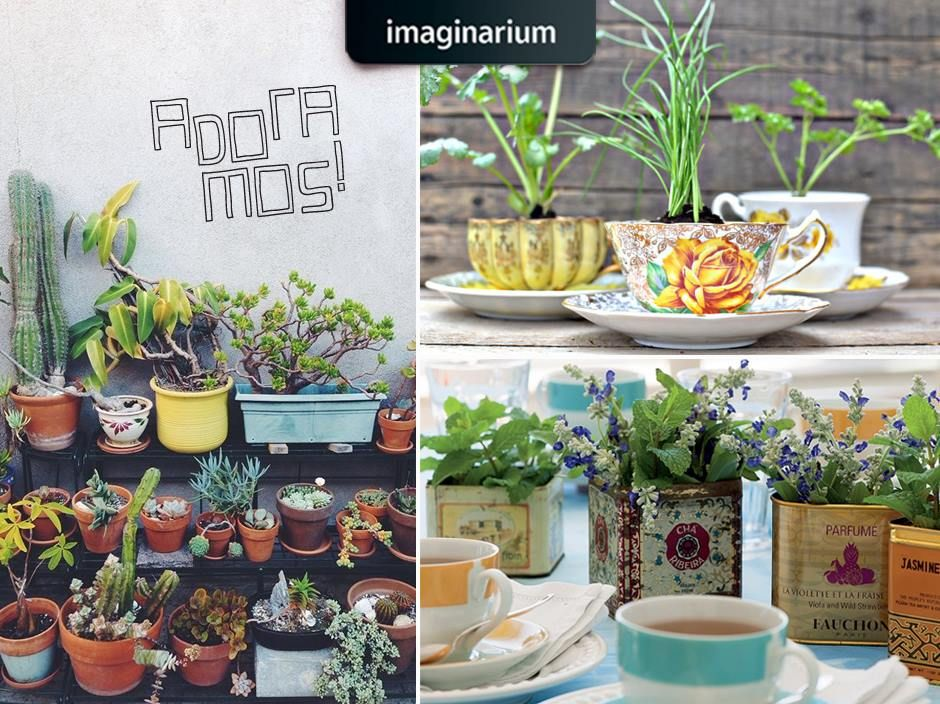 Venha no blog conferir 5 ideais criativas de como fazer mini-hortas na sua casa, cuidando assim da sua saúde e da saúde do planeta também: http://www.imaginarium.com.br/blog/inspiracao/5-ideias-criativas-de-mini-hortas/