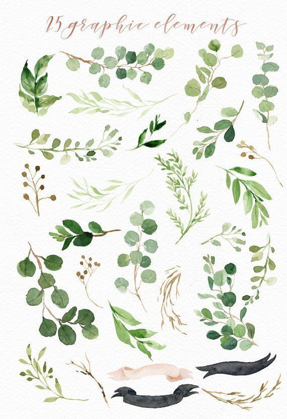 Watercolor Green Leaf Clip Art/Greenery/Small Set/Eucalyptus/Wild Leaf/Spring/Green #ribbonart