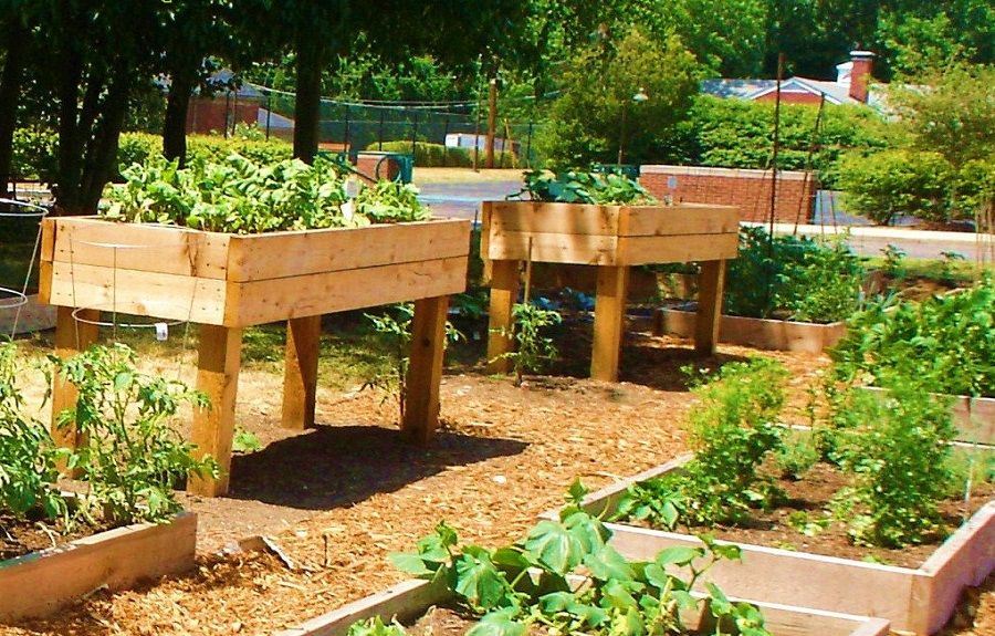 17 Best 1000 images about The many faces of raised beds on Pinterest