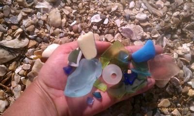 Beach Treasures Galveston County Sea Gl Catch Submitted By Nora