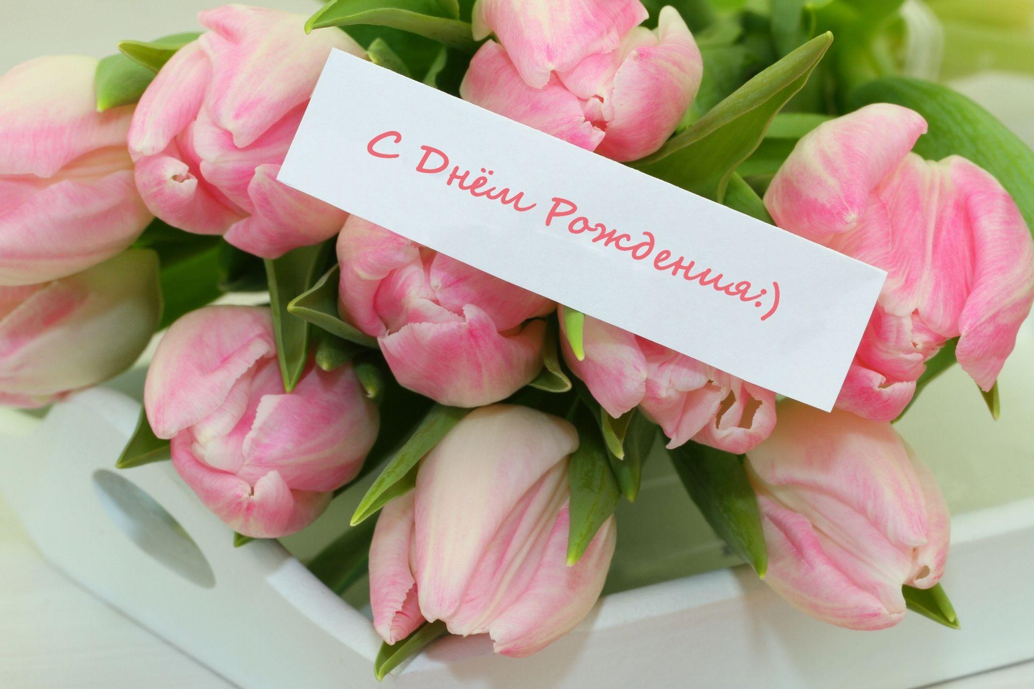 Крутую картинку, с днем рождения картинки тюльпаны красивые