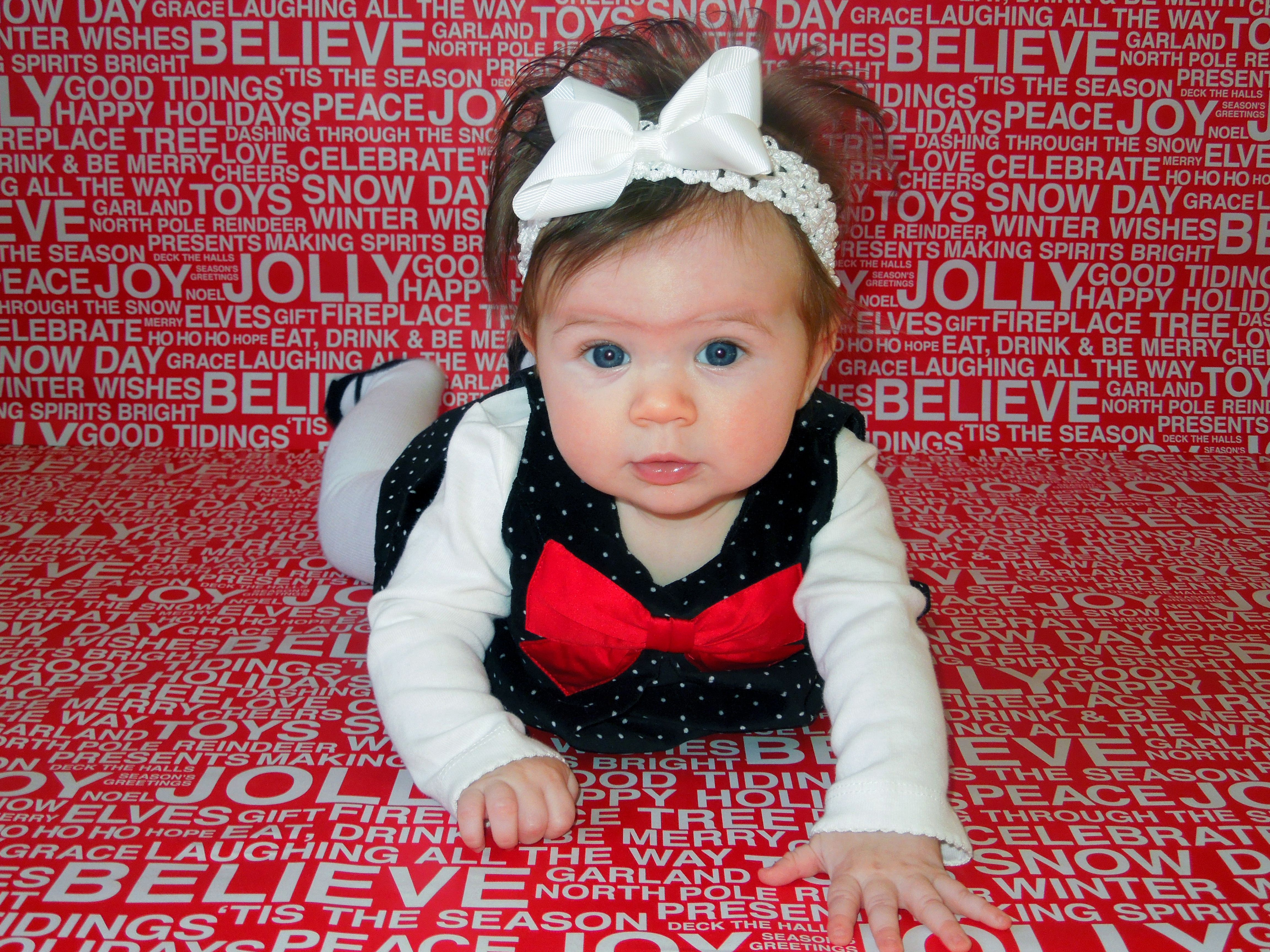 Christmas Picture Backdrop Ideas Christmas Photos Use Wrapping Paper As The Backdrop Christmas