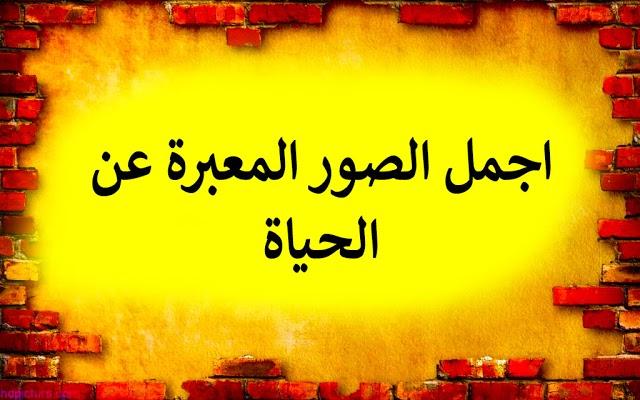 موقع قصصي 2020 Arabic Kids Arabic Calligraphy Calligraphy