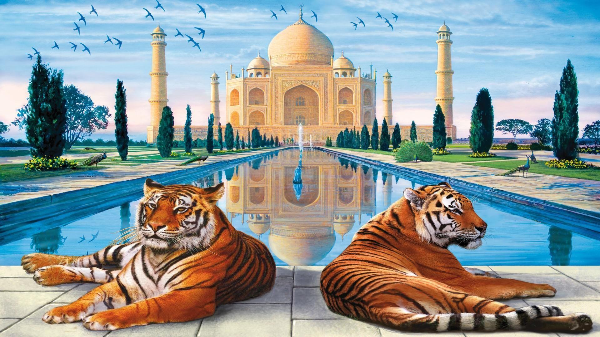 Taj Mahal Hd Desktop Wallpaper High Definition Mobile Hd