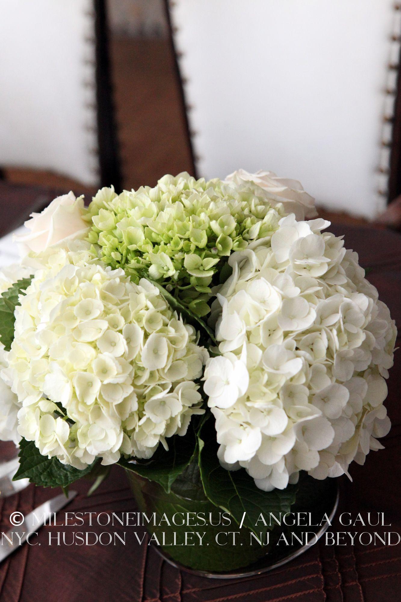 Inside wedding decoration ideas  white hydrangea centerpieces  Wedding  Pinterest  White hydrangea