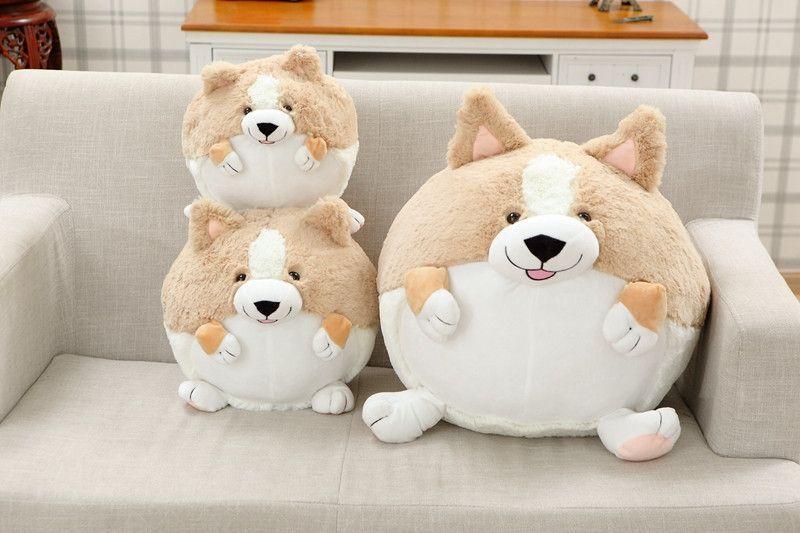 Wonderful Spherical Chubby Adorable Dog - 348f4a326db06adf731fb3e70bc5a785  HD_921827  .jpg