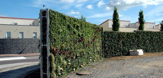 Grune Larmschutzwand Helix Compacta Garten Ecran Acoustique