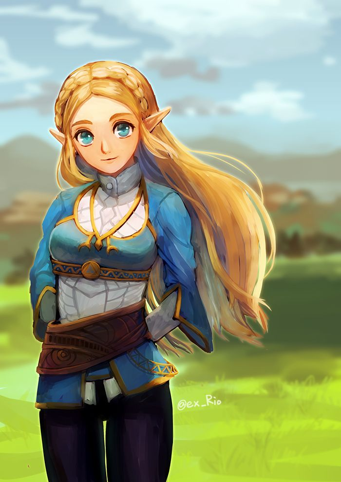 Botw Zelda Legend Of Zelda Characters Legend Of Zelda Breath Princess Zelda