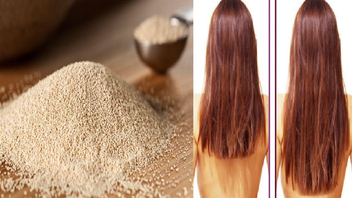 Como Acelerar El Crecimiento Del Cabello Y Detener Su Caída De Forma Rápida Y Efectiva Stop Hair Loss Hair Hair Loss