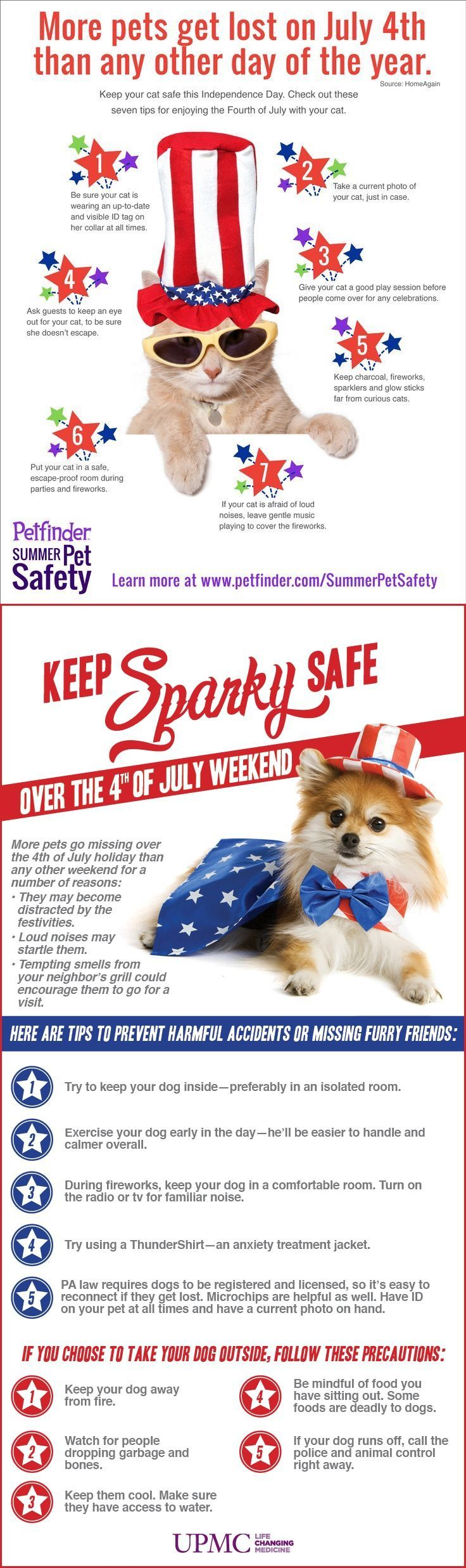 More Pets Go Missing On July 4th Than Any Other Day Of The Year Here Are Tips To Keep The Safe This Weekend Animals Dogs Cats Pet Pet Safety Pet Holiday