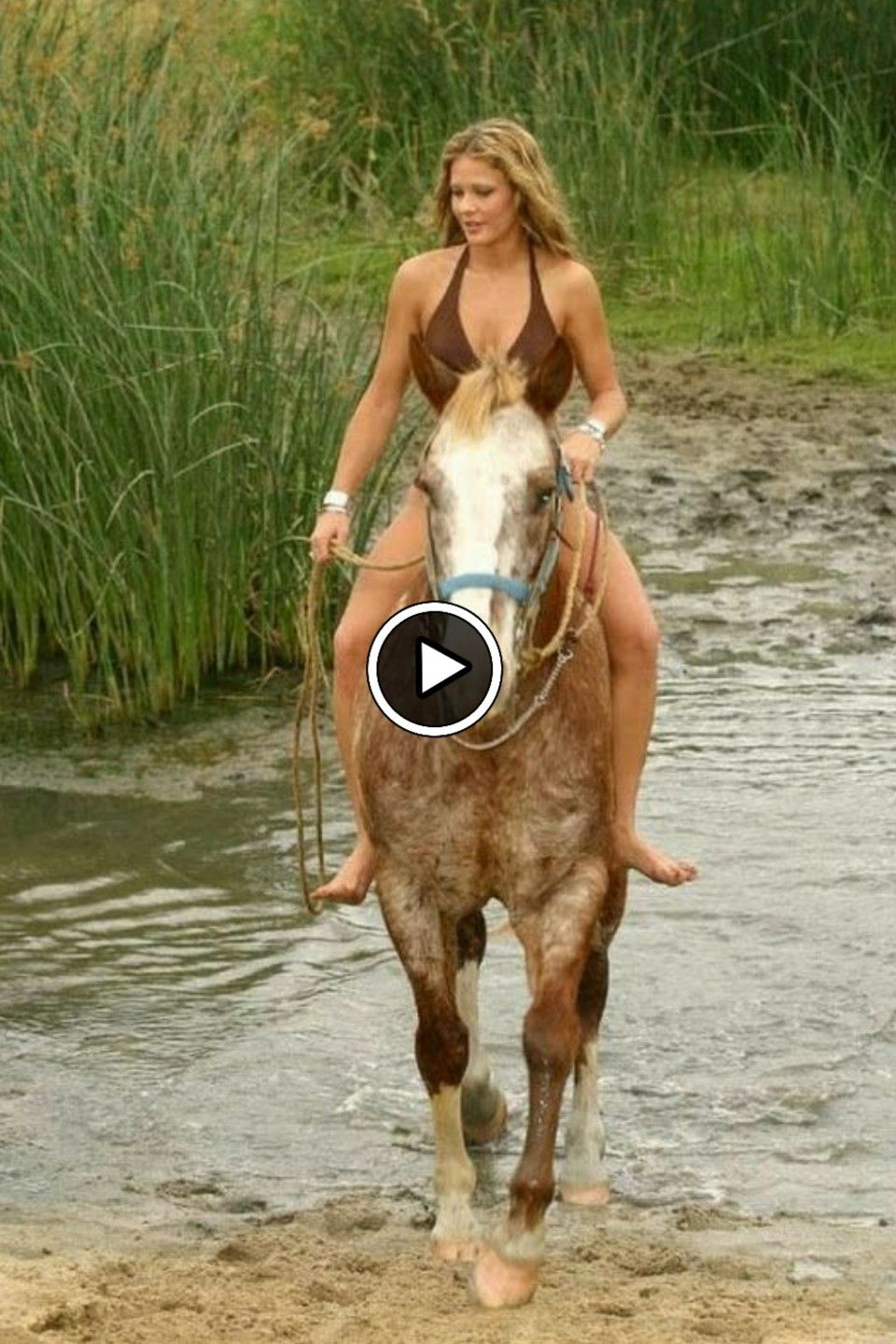 How To Bond With Your Horse Fast ( 7 BEST WAYS)   Funny