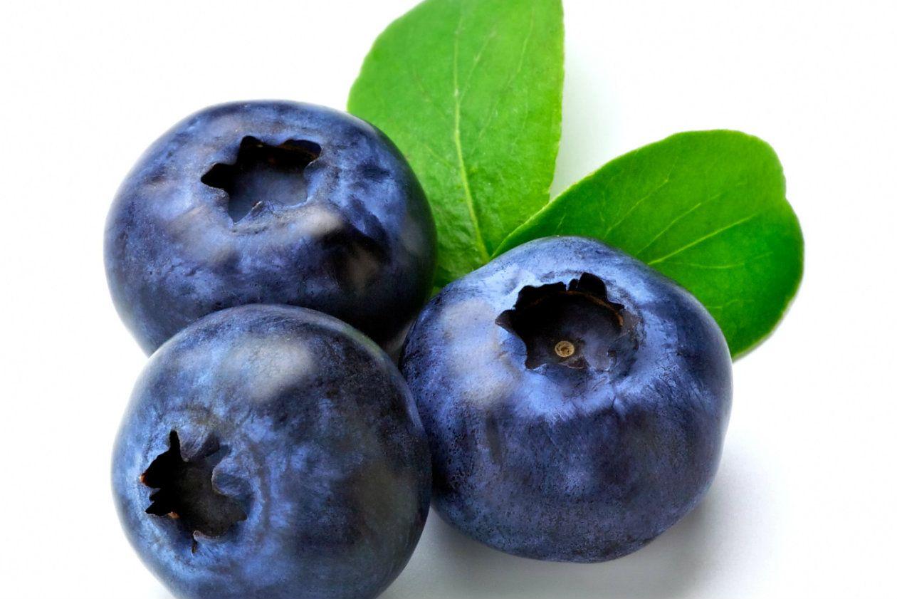 Los Mejores Analgesicos Naturales Dibujos De Frutas Bodegon De Frutas Frutas