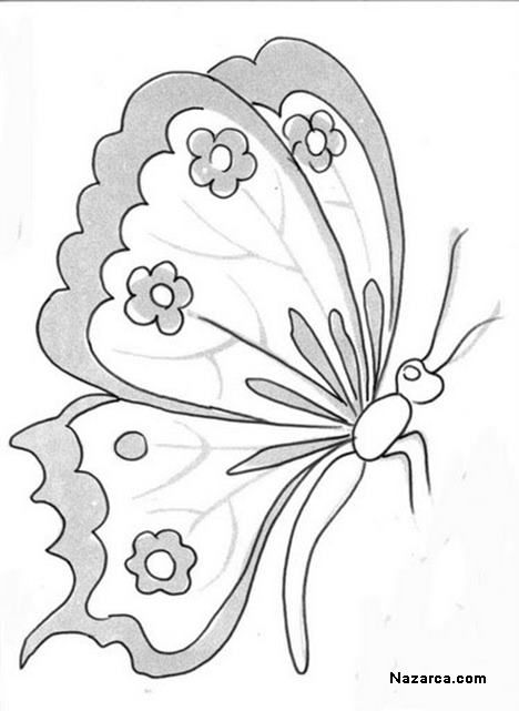Cicekli Desenli Kelebek Yan Gorunen Kelebek Kelebekler