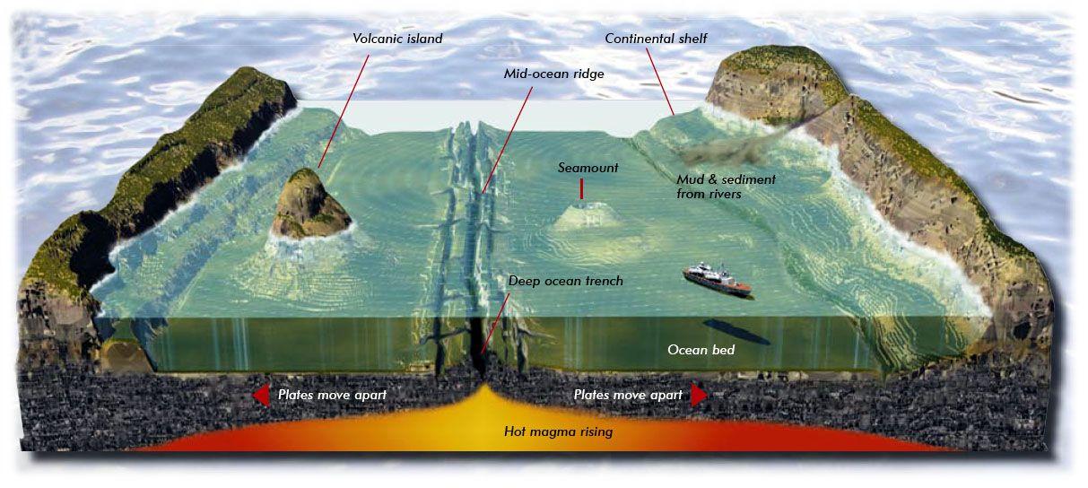 Floor Topography And Features Of The Ocean Floor Http Www .