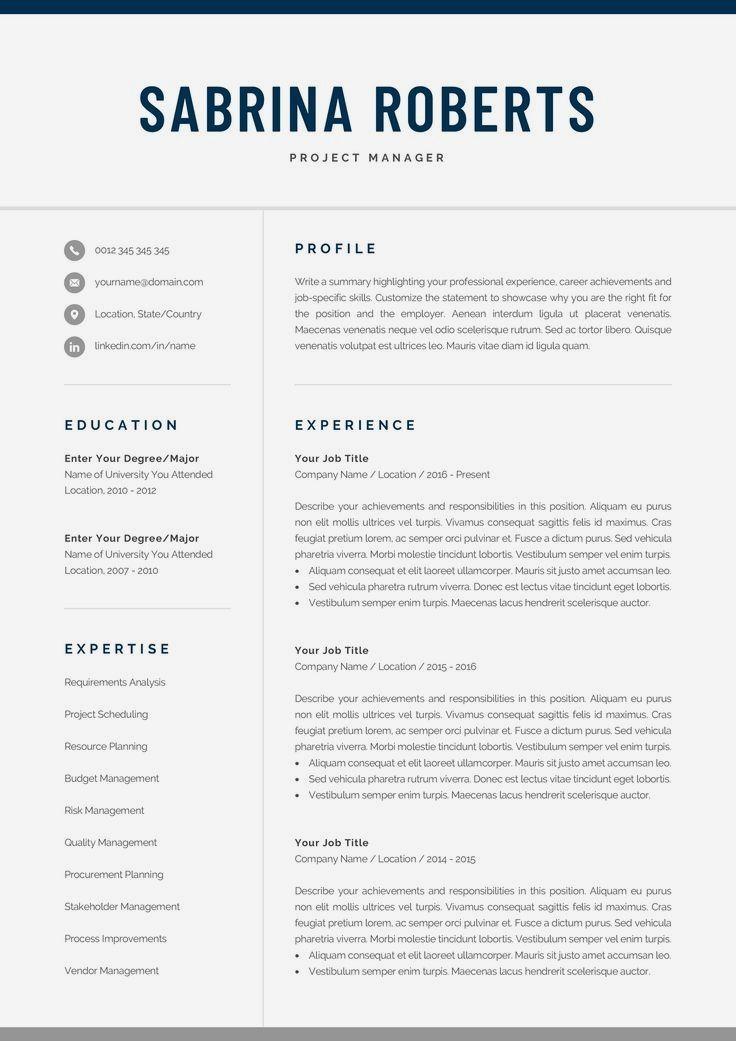 Resume Template Professional Resume CV Template