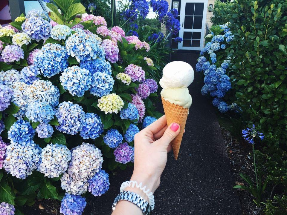 Мороженое Новой Зеландии