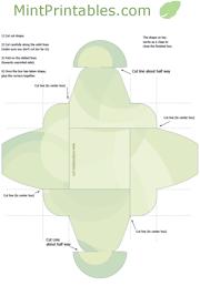 Simple Green Gift Box