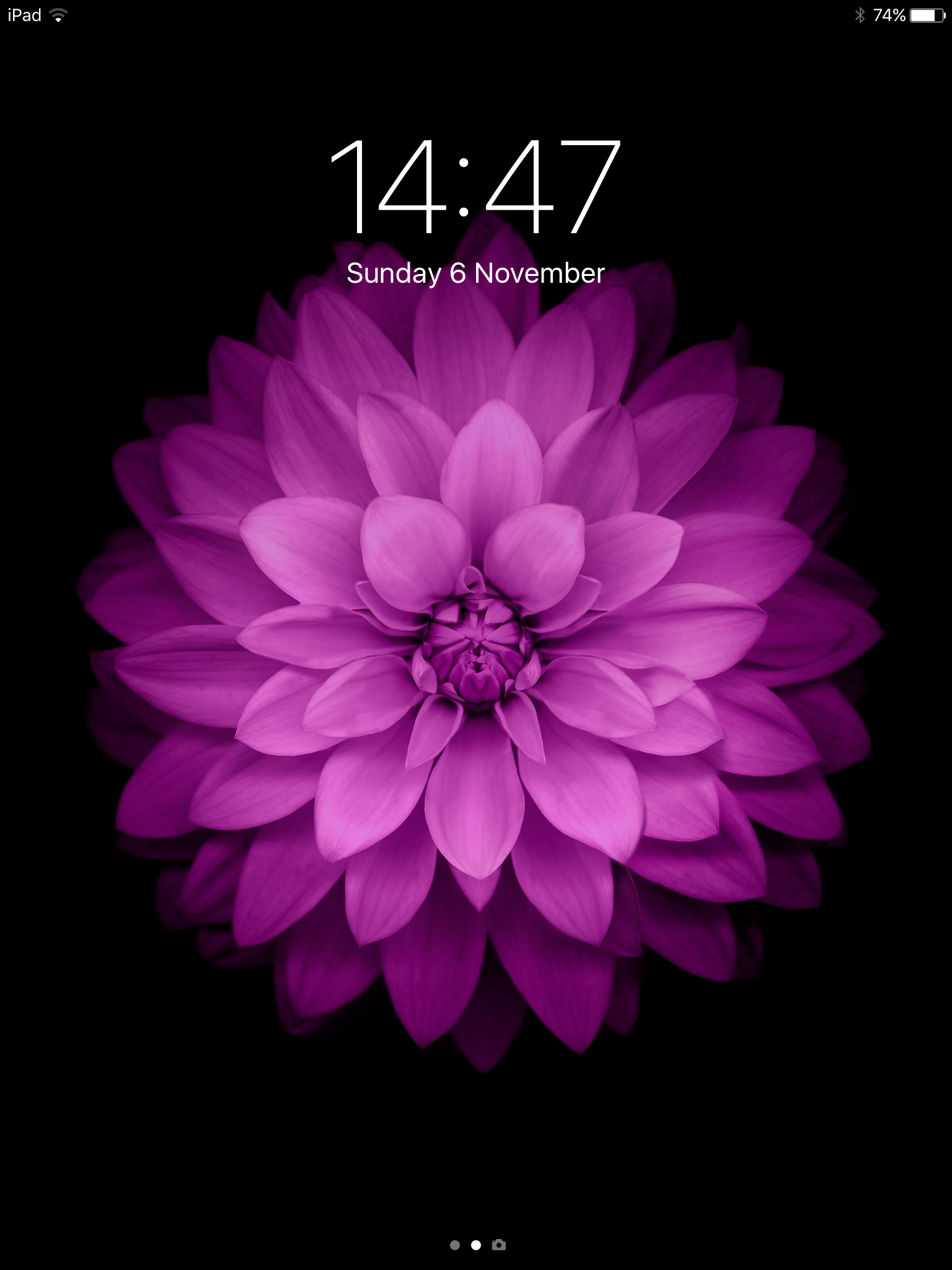 Pin by Ellie on Flowers Flower iphone wallpaper, Iphone