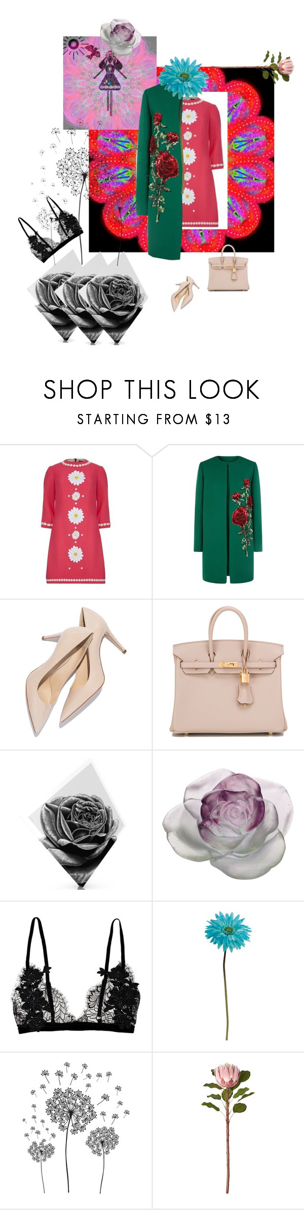 """""""Flowery insanity"""" by alla-chernets ❤ liked on Polyvore featuring Dolce&Gabbana, Hermès, Maxwell Dickson, Daum, Allstate Floral, jcp and CB2"""