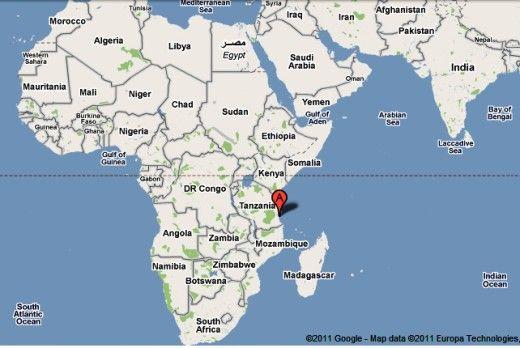 Kilwa Kisiwani: A World Heritage in Tanzania | kenya | Tanzania